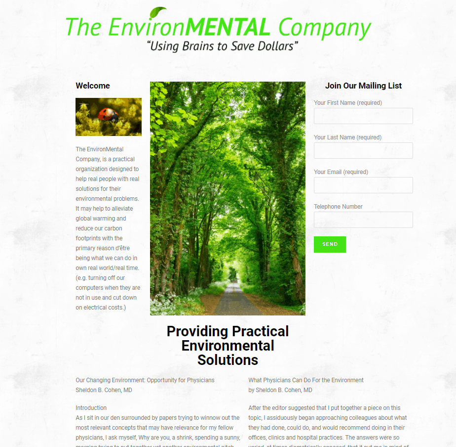image of The EnvironMENTAL Company Website